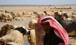 A local herder